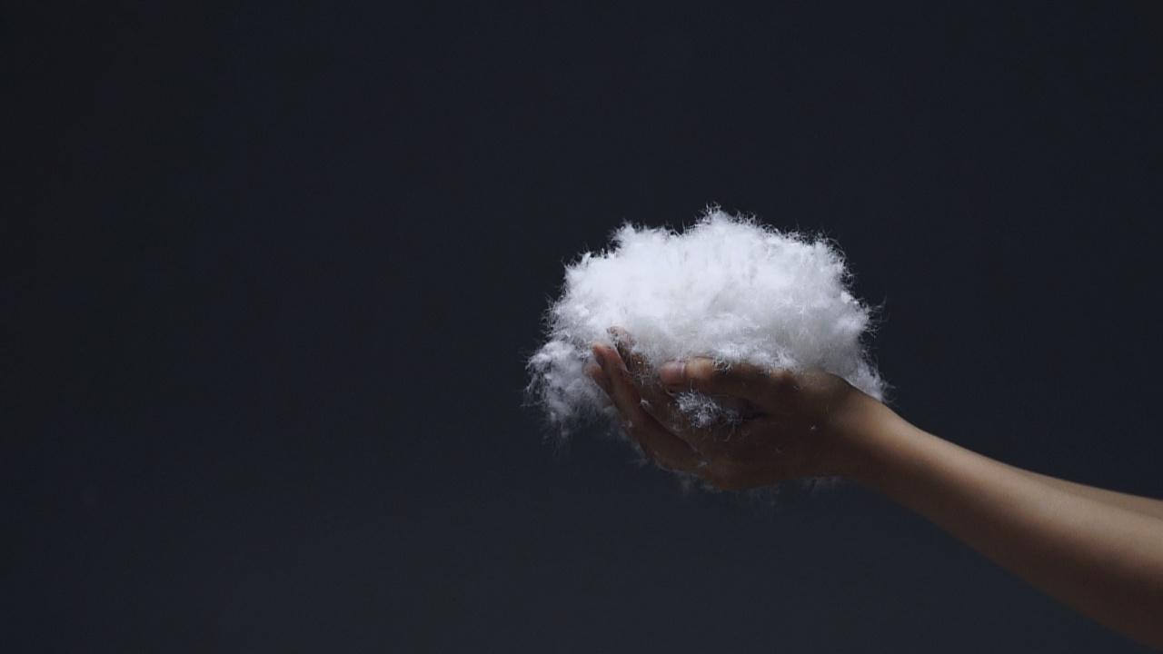 白鹅绒极暖特性,来自于绒丝上细密排列的无数微小鳞片,含有大量的静止空气,可吸收人体散发的热气而锁住温暖,隔断冷空气,达到极好的保温效果。而天然动物性纤维的弹性极佳,95%的含绒量,其蓬松度是同等重量棉花的5倍、羊毛和蚕丝的4倍;不会潮湿发霉,不易产生螨虫等有害细菌;同时是所有羽绒中,最清淡无味的上乘品种。