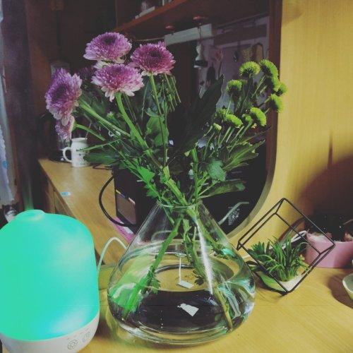 159****9358_小山空气花瓶大号怎么样_2