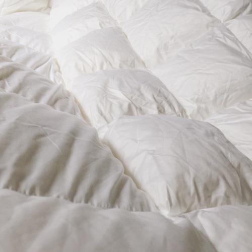 阿离_造作有眠™-极暖白鹅绒被芯(厚被)怎么样_3