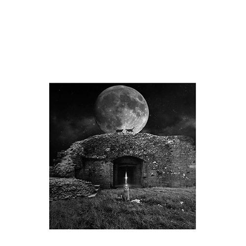 旅行家限量摄影 | Tomasz Zaczeniuk