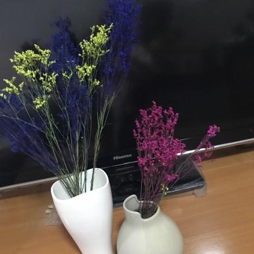 果净宝_双生陶瓷花瓶小瓶怎么样_4