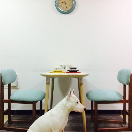 造作造作8点椅™精选评价_死翼耐萨里奥