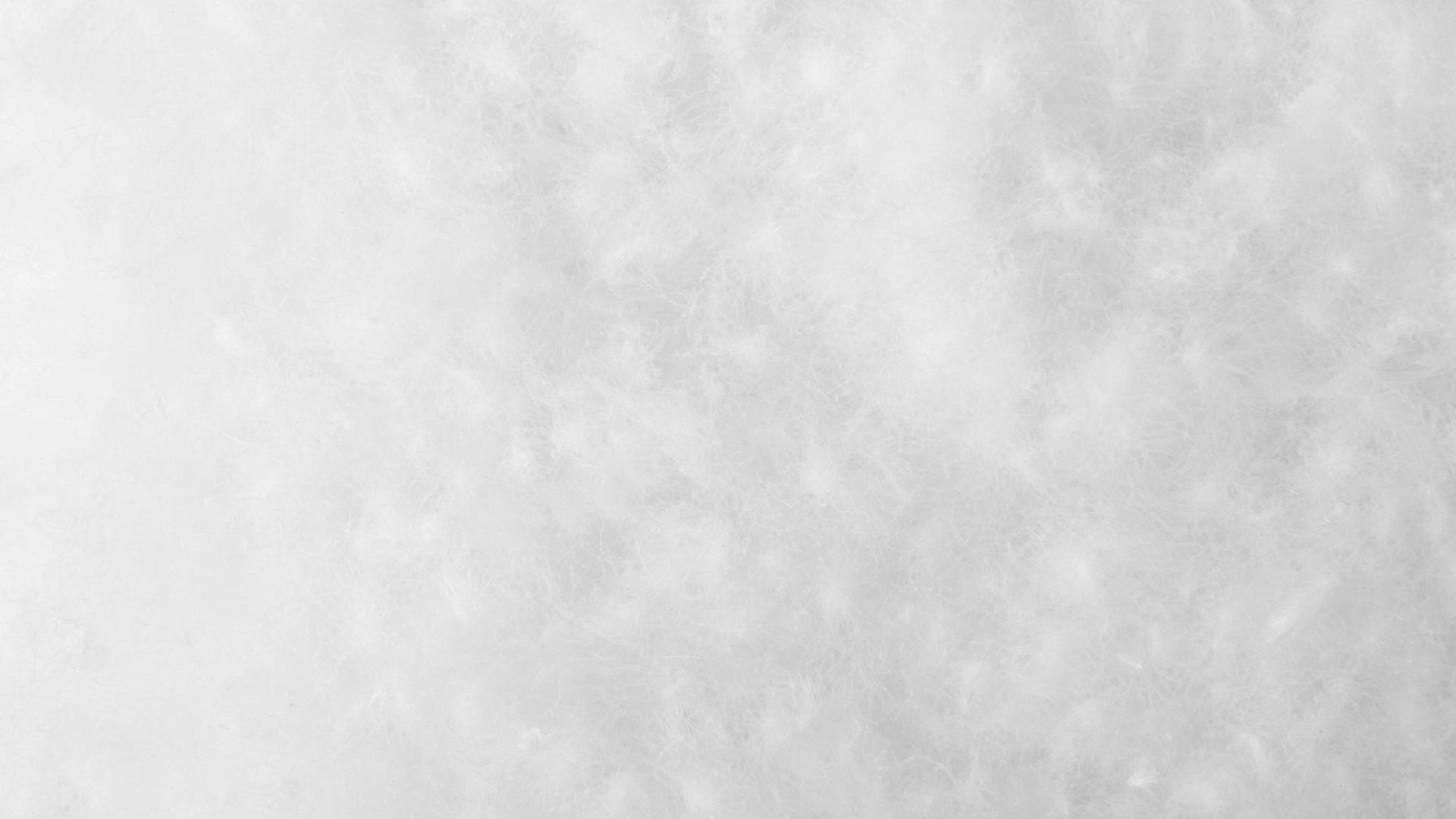 95%优质白鹅初绒,超大绒朵,超国标蓬松度