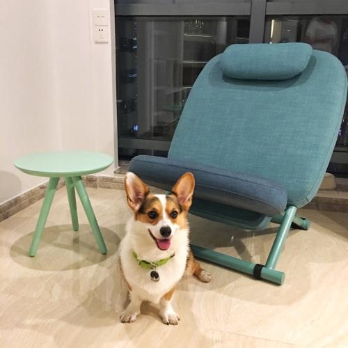 造作西竹躺椅精选评价_卫星猫猫