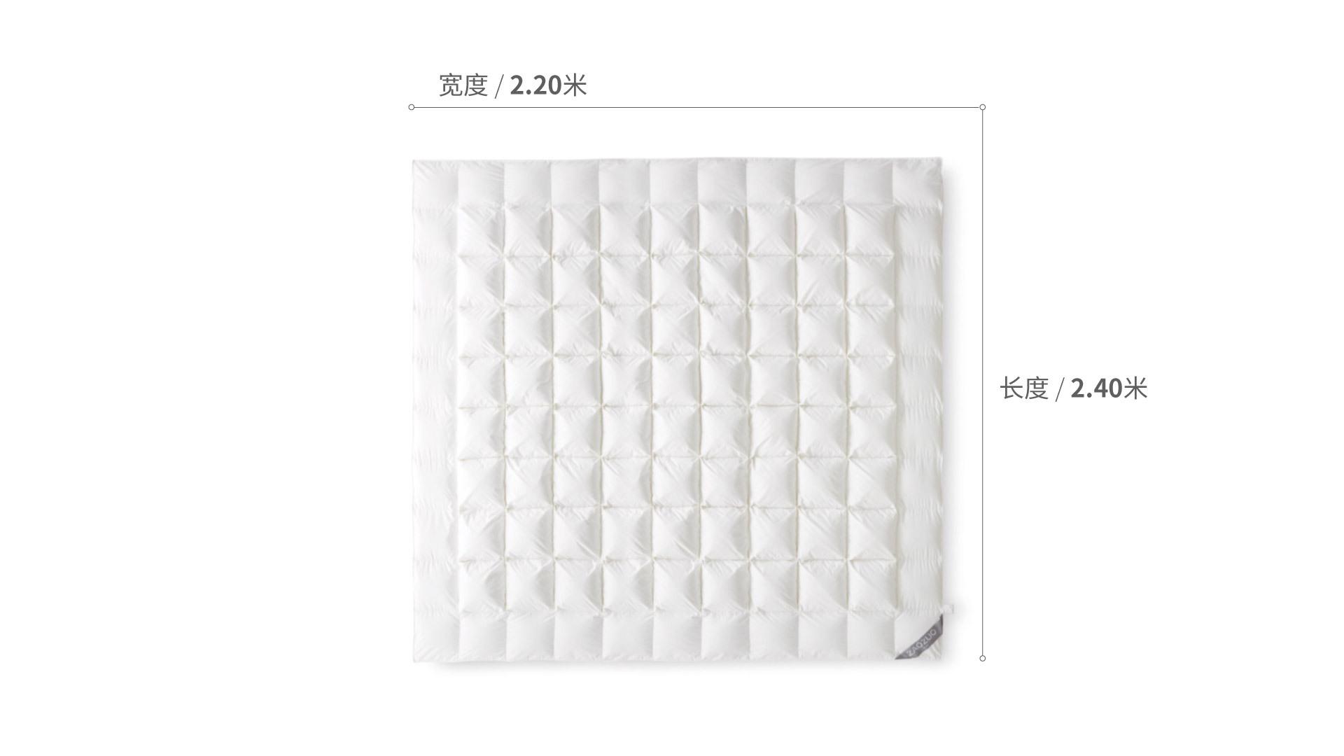 造作有眠极暖白鹅大绒被芯®1.8米床床·床具效果图