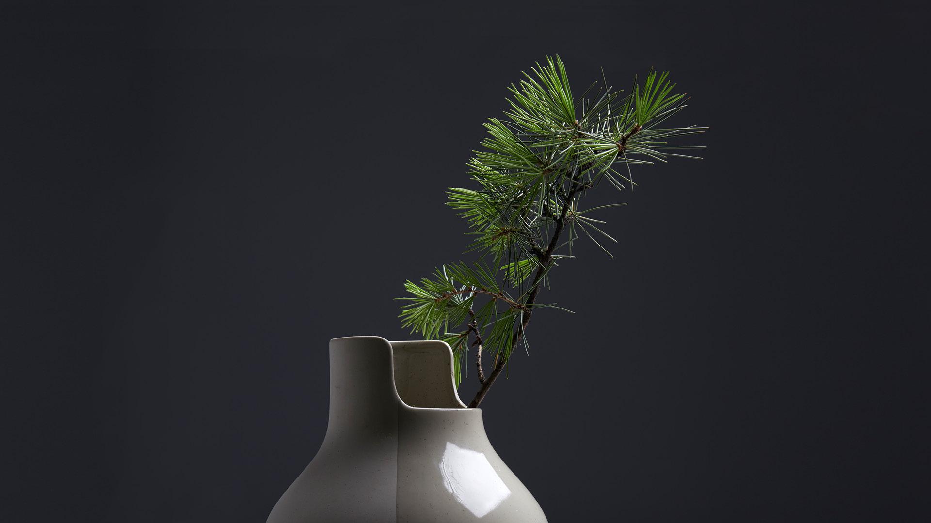 高洁松枝,中国花艺品格