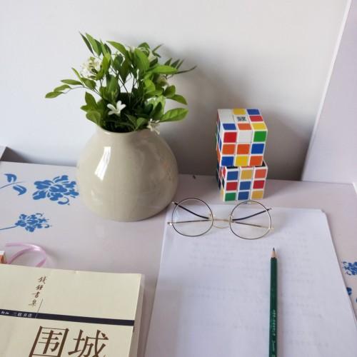 柚子_双生陶瓷花瓶小瓶怎么样_2