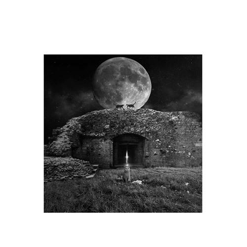 旅行家限量画芯 | Tomasz Zaczeniuk作品2号-月光猫(装裱后)装饰效果图