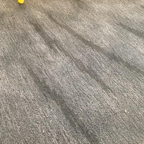 Oliver Fan Zengcong_凝沙新西兰羊毛手织地毯大号怎么样_2