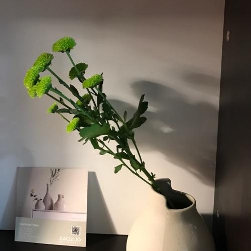 造作双生陶瓷花瓶精选评价_Yuanfang