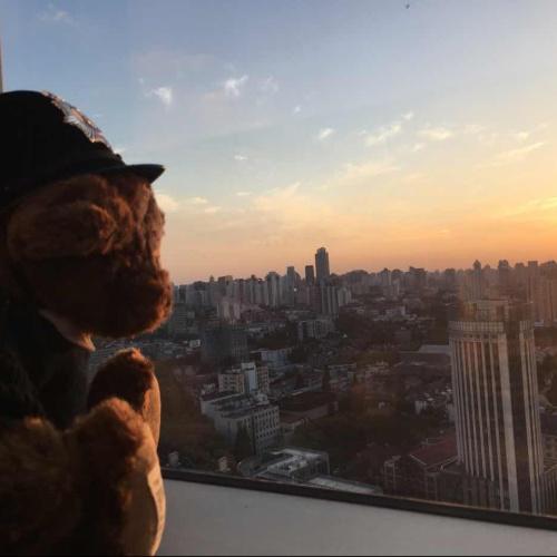 汪大大在上海