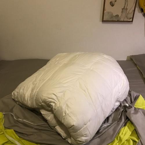 无常_造作有眠™-极暖白鹅绒被芯(厚被)怎么样_4