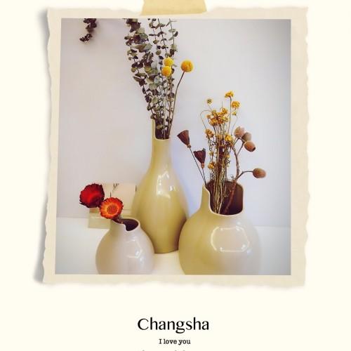 清儿_双生陶瓷花瓶大中小3只套装怎么样_4