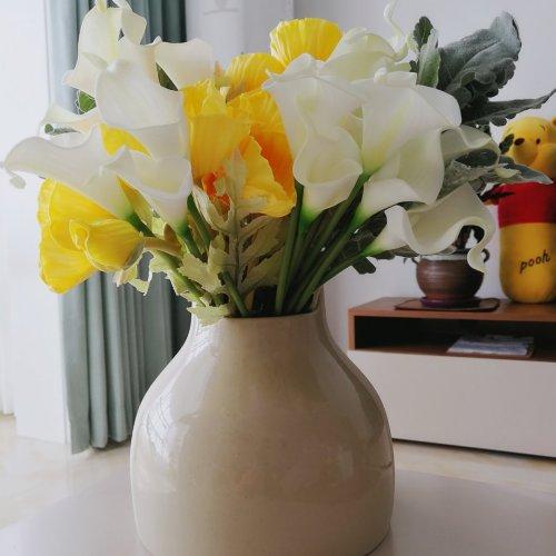 造作双生陶瓷花瓶精选评价_sunqun@****
