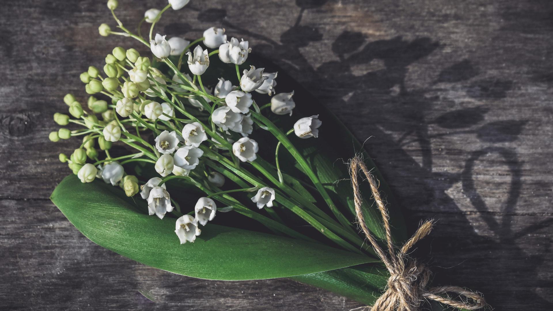 Return of happiness<br/>从新娘手上飞来的光之花朵