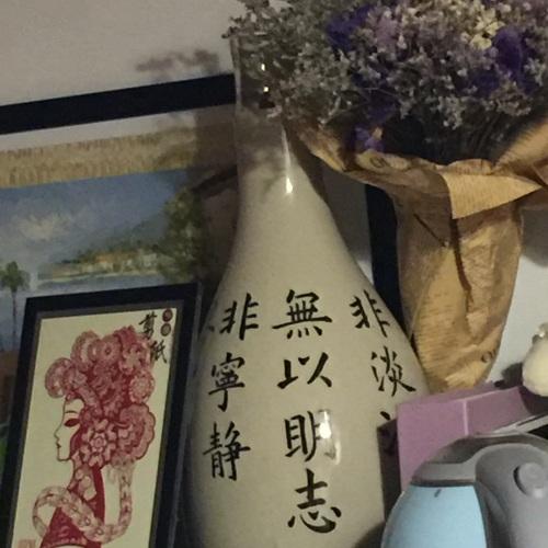 sharon邵zr_双生陶瓷花瓶大瓶怎么样_1