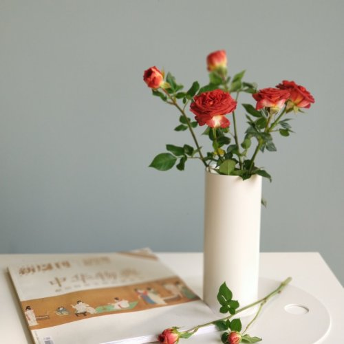 跑题王乔小姐_圆率装饰花瓶怎么样_2