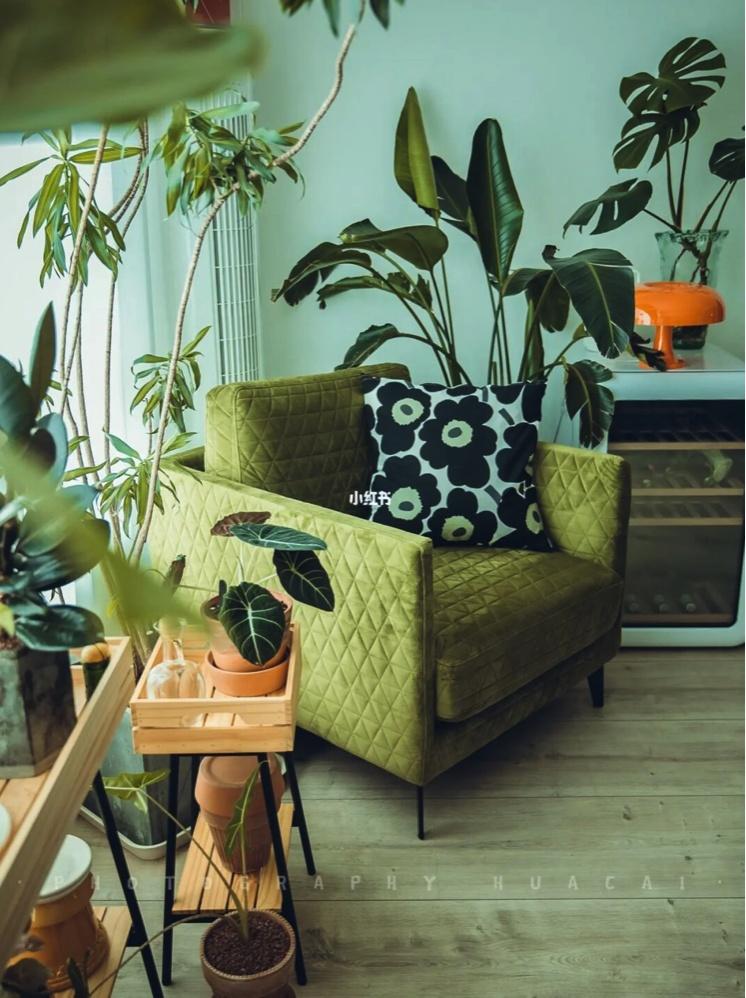 造作君对大溪地沙发发布的晒单效果图及评价