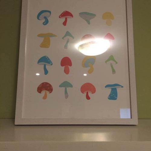 213MP1_作画-蘑菇系列之彩怎么样_1