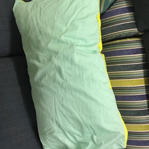 小陈晨_造作有眠™-柔纤枕芯980g中高枕怎么样_2