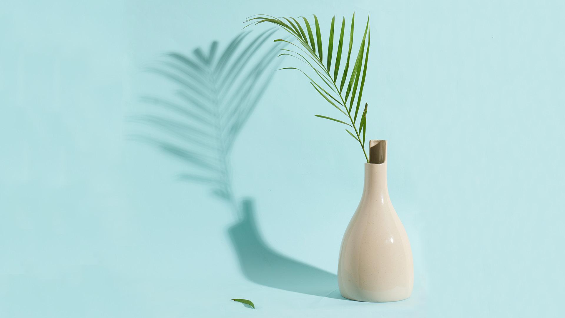 双生大瓶,长叶绿植更显身形