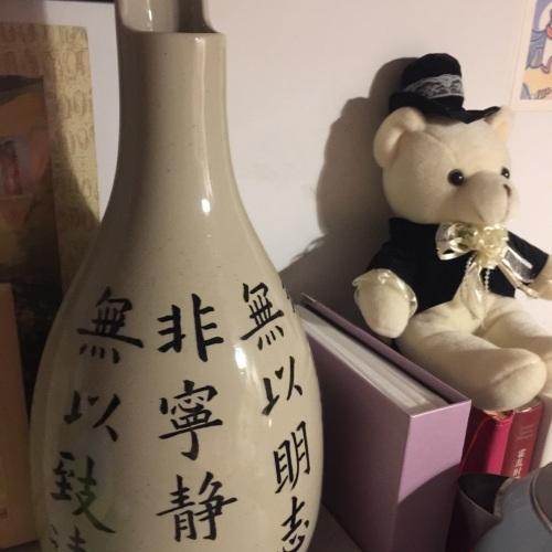 sharon邵zr_双生陶瓷花瓶大瓶怎么样_2