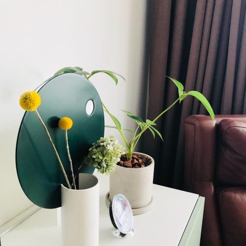 王远腾_圆率组合装饰花瓶怎么样_1