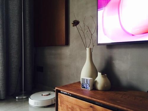 张先生对双生陶瓷花瓶发布的晒单效果图及评价