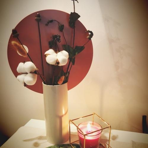 MISS_IRIS_圆率装饰花瓶怎么样_1