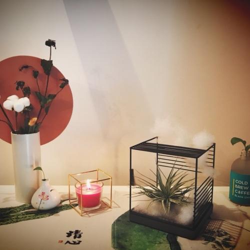 MISS_IRIS_圆率装饰花瓶怎么样_2