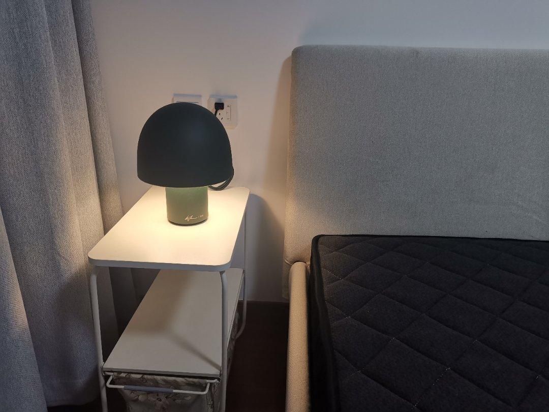 Z&z对蘑菇台灯发布的晒单效果图及评价