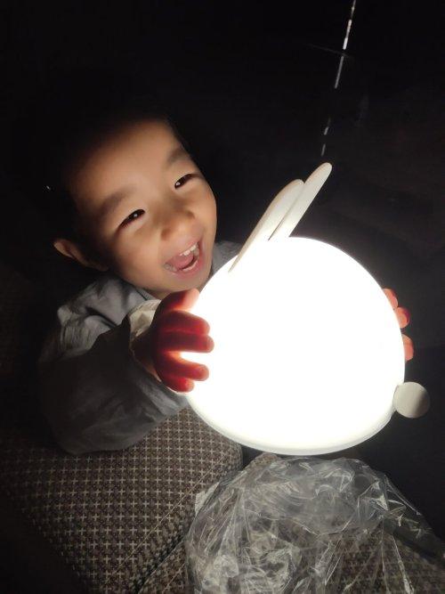 三亩地对造作月兔灯®-生活家团发布的晒单效果图及评价
