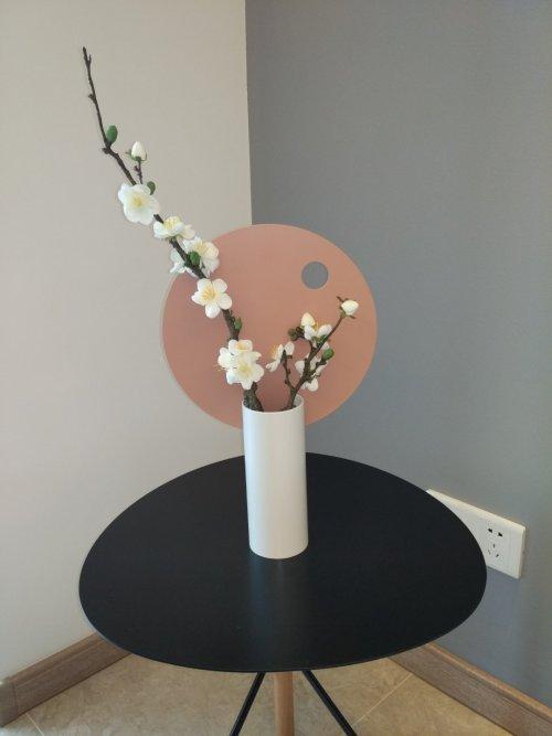 小豆眼对圆率组合装饰花瓶发布的晒单效果图及评价