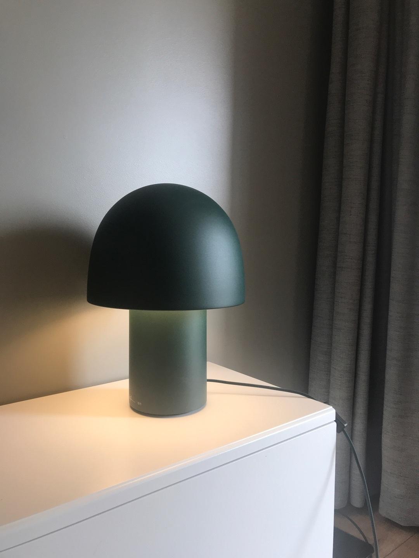 赵海霞对蘑菇台灯发布的晒单效果图及评价