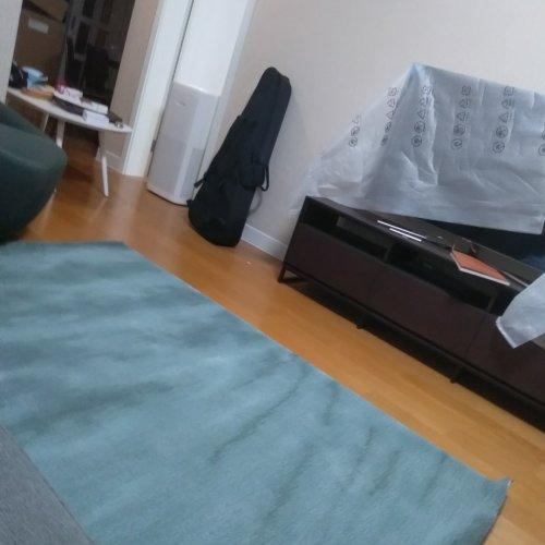 含沙射影_凝沙新西兰羊毛手织地毯小号怎么样_3