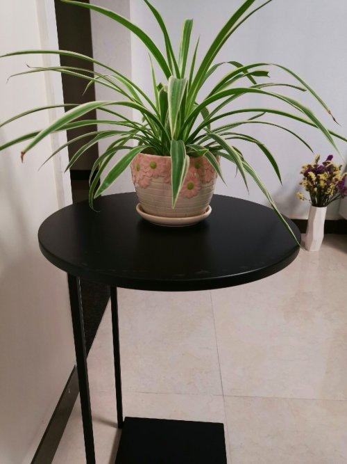 植繁对熊猫边桌发布的晒单效果图及评价