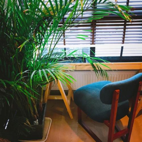 186****6055对造作8点实木软椅职业版®发布的晒单效果图及评价