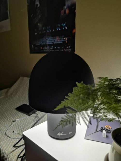 琦玉米對蘑菇臺燈發布的曬單效果圖及評價